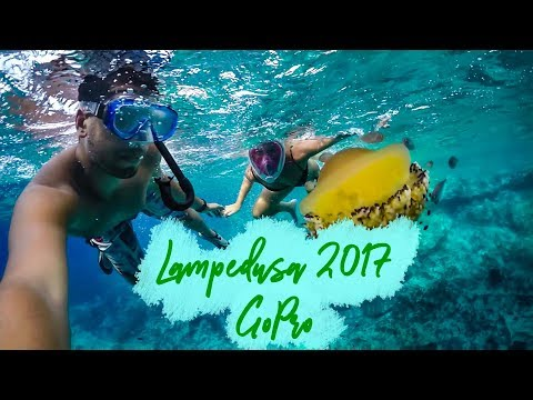 Lampedusa, more than just an island [Travel video]