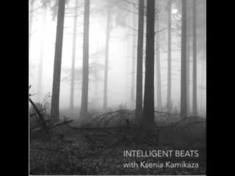 Alex Meshkov - Intelligent Beats