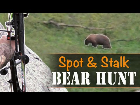 Spot and Stalk Bear Hunting with a Bow! (Eastmans' Hunting TV)