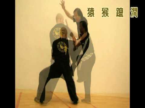 Xing Yi Monkey Form - CS Tang and Sebastian
