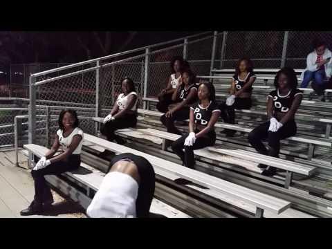 Purple Diamond Dancers of Boynton Beach High School 10 /14/16