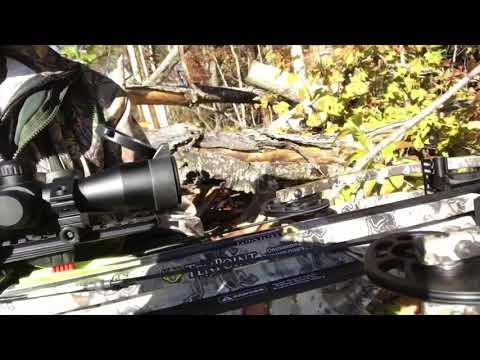 Eastern Kentucky Crossbow Hunt September 2020