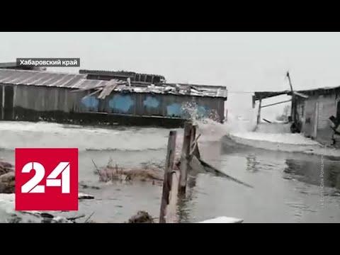 Неудачная попытка: почему зима никак не может закрепиться на Русской равнине? - Россия 24