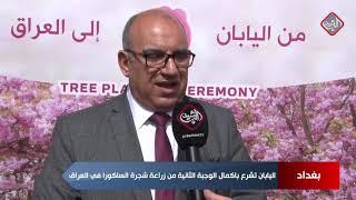 اليابان تشرع باكمال الوجبة الثانية من زراعة شجرة الساكورا في العراق - تقرير جابر جمال