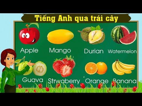 Thanh nấm - Học tiếng Anh qua các loại trái cây và nhận biết các loại trái cây