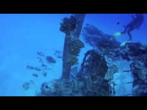 Aquanautics Dive: Hawaiian Sights