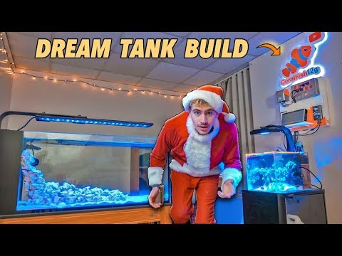 MY DREAM AQUARIUM BUILD!!! - (in Dorm Room)