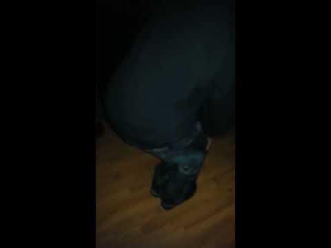 Speaker Knockerz -Dance
