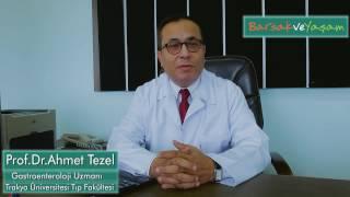 İnflamatuvar Bağırsak Hastalığı  İbh  Nedir?