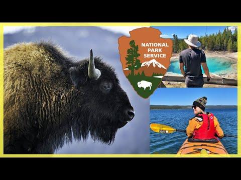 Exploring Yellowstone National Park | Itinerary, Favorite Sights, & Tips for Visiting