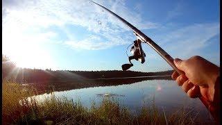 Ловля карася в середине июля. Рыбалка до заката.