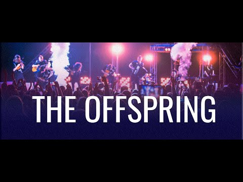 Шоу-оркестр «Русский Стиль» — The Offspring, The Kids Aren't Alright mp3