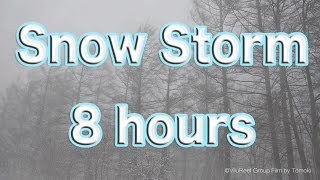 Snow Storm 8 hours/Nature Sound Music For Sleep, Study, Work, Meditation