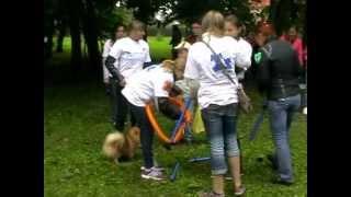 Фестиваль беспородных животных. Обнинск 2 сентября 2012