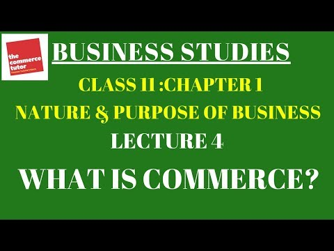Business Studies Chapter 1 Lecture 4 Commerce | Trade and Auxiliaries to Trade