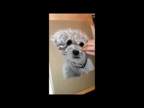 dog-portrait-bichon-frise