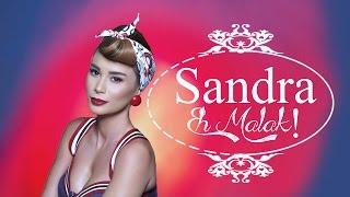 شاهد.. اللبنانية «ساندرا» تطرح أحدث أغانيها «إيه مالك»