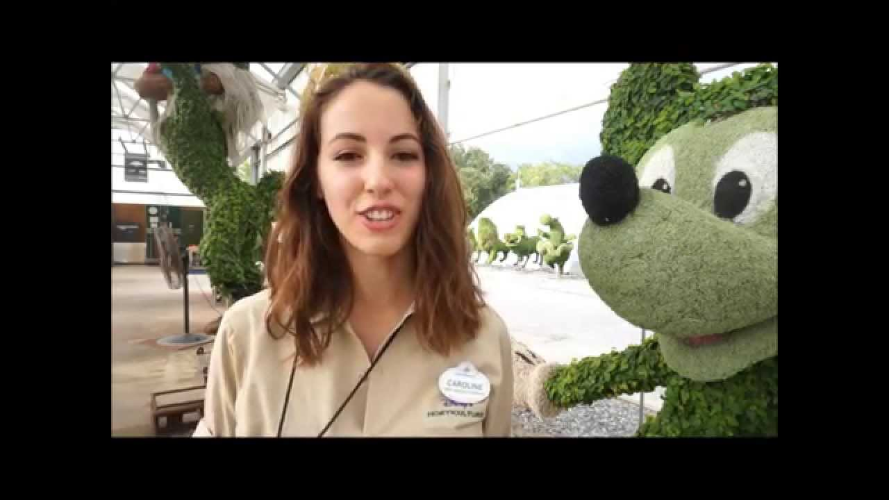 Disney Professional Horticulture Internship Video Project Youtube