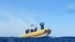 Trailer Top Diving Gran Canaria