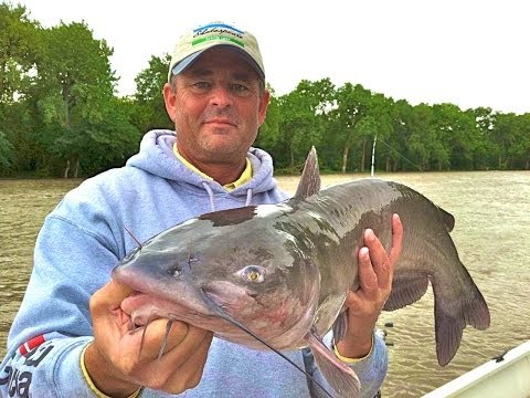 Here is the Best Catfish Rods