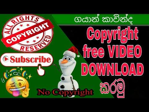 Download Free stock videos · Pexels Videos DOWNLOAD කරන පහසුම විදිහ (episode#01)