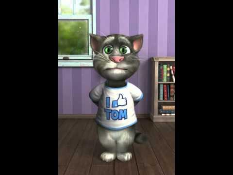 gato tom cantando la macarena
