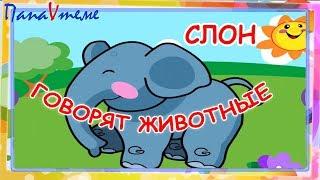 Говорят животные. Мульт-песенка, видео для детей. Laugh and play animals sound russian. Папа v теме