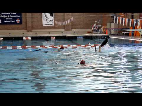 UIUC Underwater Hockey Tournament 5