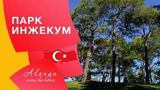 Турция Аланья Парк Инжекум в Авсаларе . Где отдохнуть в Алании. Отдых в Турции 2020.