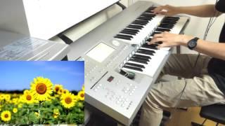 葉加瀬太郎さんのひまわりを演奏してみました。 とてもきれいな曲で好き...
