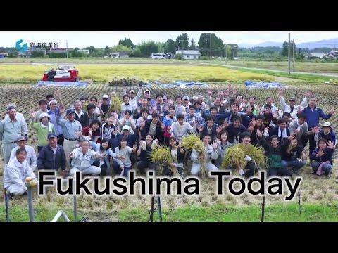 Fukushima Today