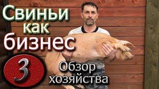 видео: МОЕ ФЕРМЕРСКОЕ ХОЗЯЙСТВО