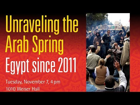 Unraveling the Arab Spring: Egypt since 2011