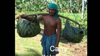 A DAY IN THE LIFE OF SAMOA