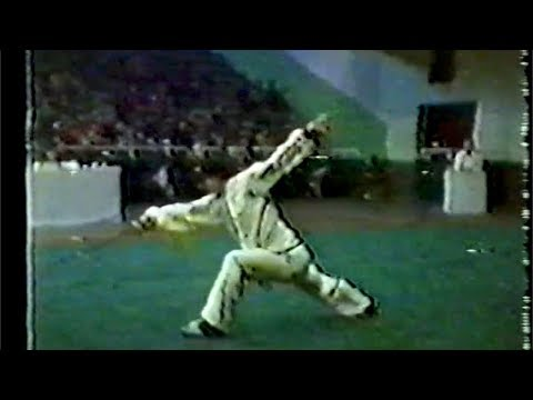 【武術】1984 男子剣術 (1/2) / 【Wushu】1984 Men Jianshu (Swordplay) (1/2)