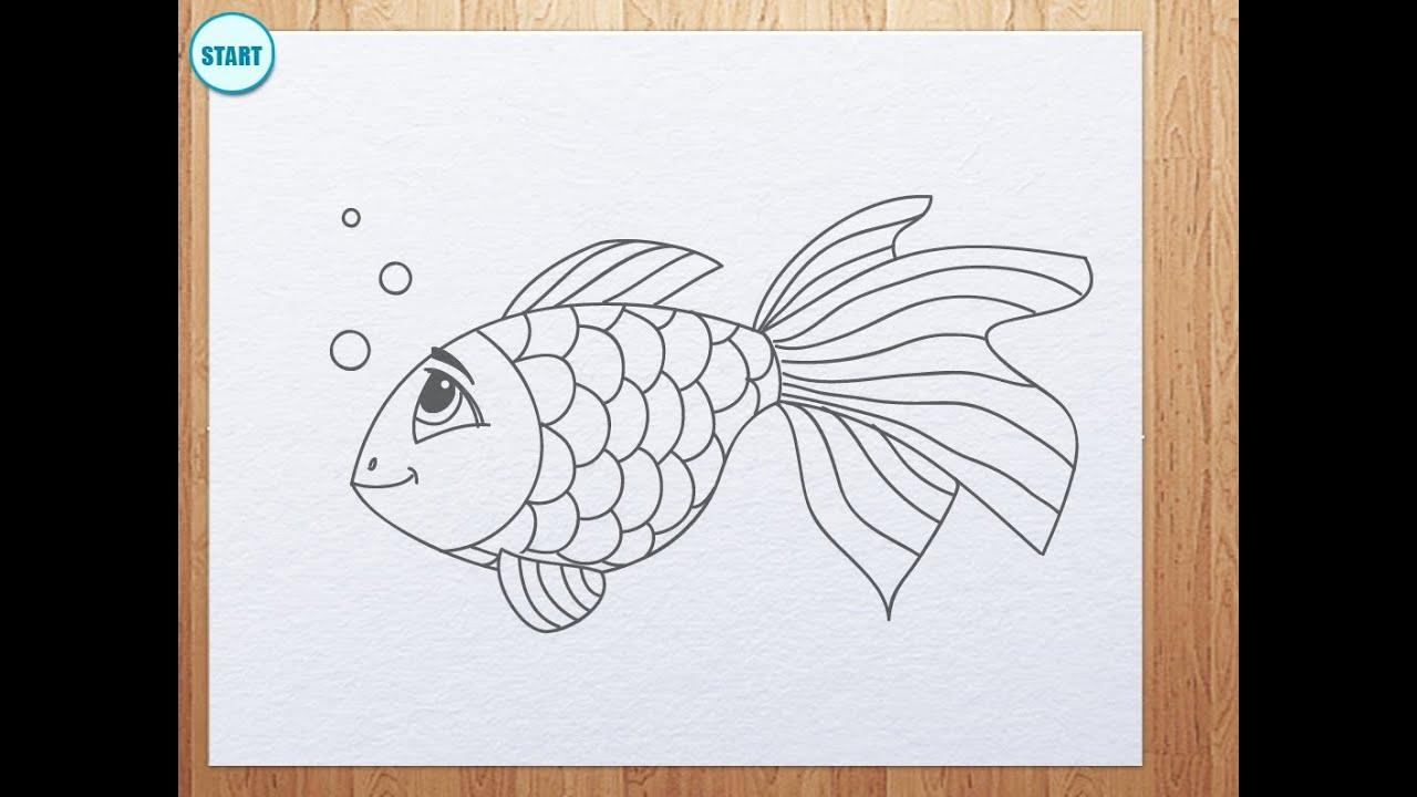 How To Draw A Fish  A Koi Fish Chibi Style