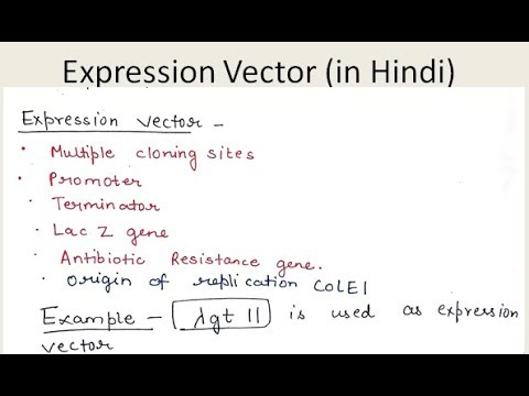 12- Expression Vector ( In Hindi ) | For B.Sc. And M.Sc.
