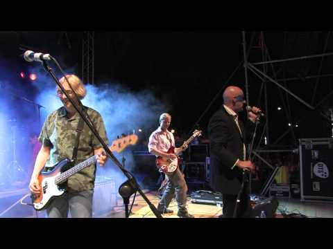 The sidewinder sleeps tonite- R.E.M. tribute band
