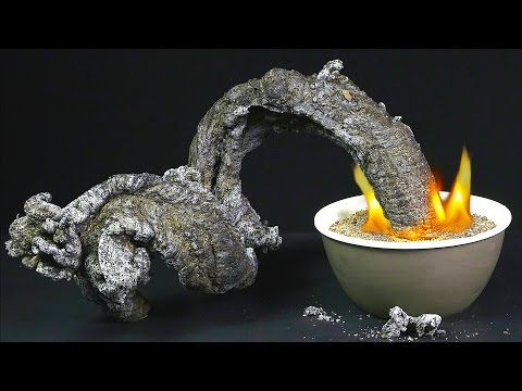 Black Fire Snake - Amazing Science Experiment