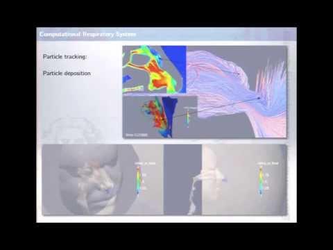 BSC & HPC in Biomedical Research