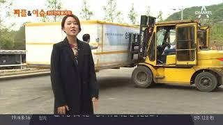 아직 남아있는 숭례문의 부재… 특급 이송·보존 작전 #9년만