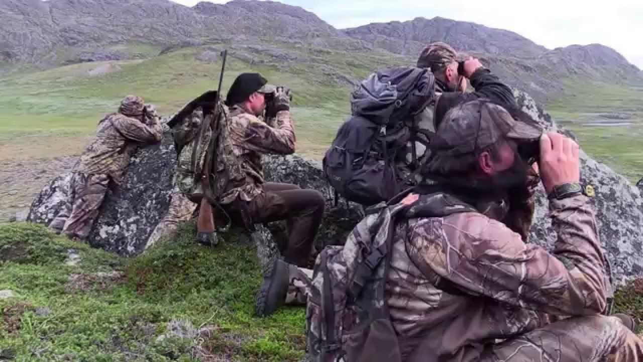 Охота в Гренландии на овцебыка и северного оленя с луком и стрелами 2 серия