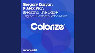 Breaking The Cage (Original Mix)