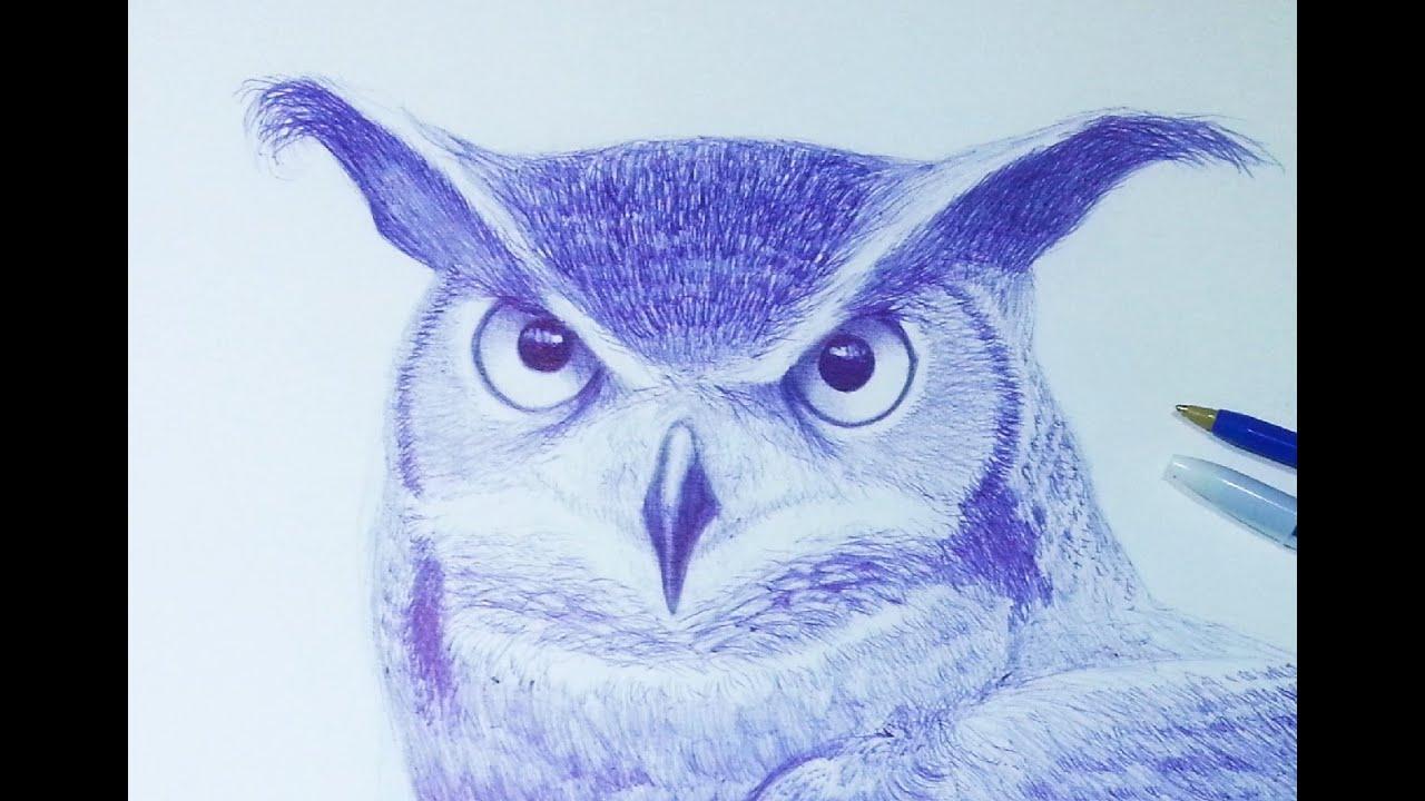 How To Draw A Realistic Owl Como Dibujar Un Buho Realista Bic