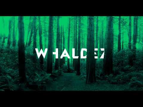 Whaldez - Reach Of Forest [ Progressive, Tech House Mix ] 2018 March