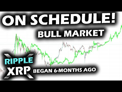 IT'S A BULLISH MARKET And The Bitcoin And Ripple XRP Price Chart Show It