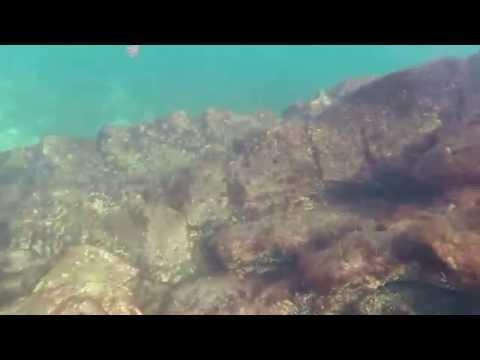 Snorkeling on Caspian Sea (Pirallahi)
