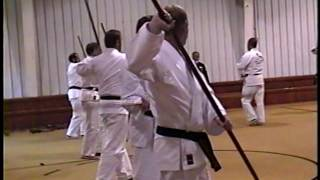 Bo Exercises with Master Kise, Demo