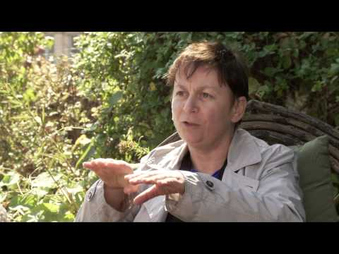 Irish Writers In America - Anne Enright - society changes