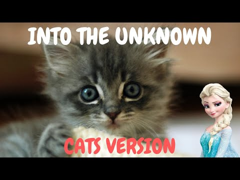 Cats Sing Into The Unknown from Frozen 2 | Cats Singing Song Parody